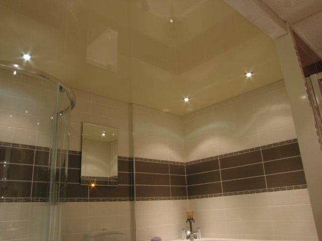 Потолки ванной и в туалете – Натяжной потолок в санузле: особенности и виды