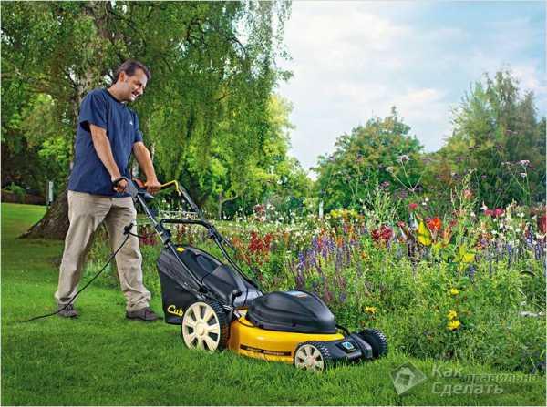 выбрать газонокосилку электрическую форум